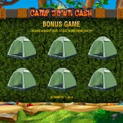 camptowncash_bonus_game-1