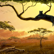 wild-cats_bg_day