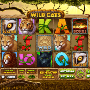wild-cats_main-game