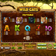 wild-cats_paytable2