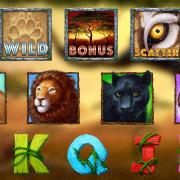wild-cats_symbols