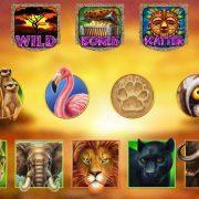 hot_safari_symbols