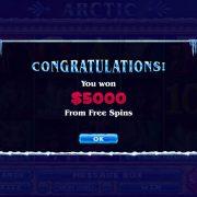 arctic_popup-2