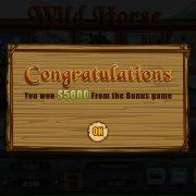 wild_horse_popup-4