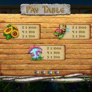 world-of-dwarfs-paytable-3