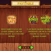 wild_cats_paytable-1