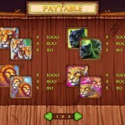 wild_cats_paytable-2