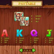 wild_cats_paytable-3