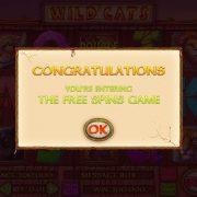wild_cats_popup-1