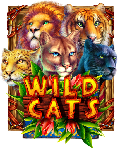 wild_cats_preview