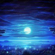 lions_paradise_background_night