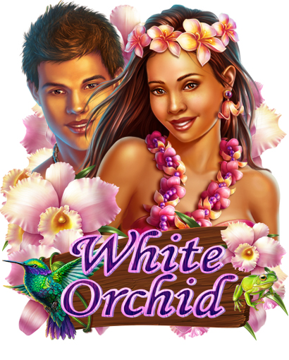 white_orchid_preview