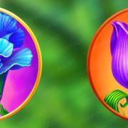 blossom_paradise_symbols-2