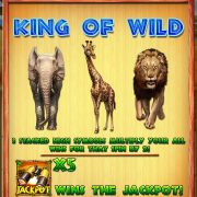 king_of_wild_rule