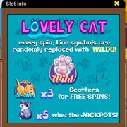 lovely_cat_info