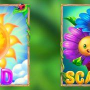 blossom_paradise_desktop_wild-scatter