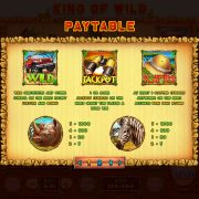 king_of_wild_desktop_paytable-1