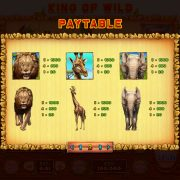 king_of_wild_desktop_paytable-2