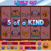 lovely_cat_desktop_5oak