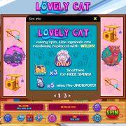 lovely_cat_desktop_info