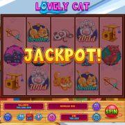 lovely_cat_desktop_jackpot-1