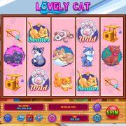 lovely_cat_desktop_reel