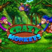crazy_monkeys_splash_screen