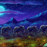 savannah_background-2